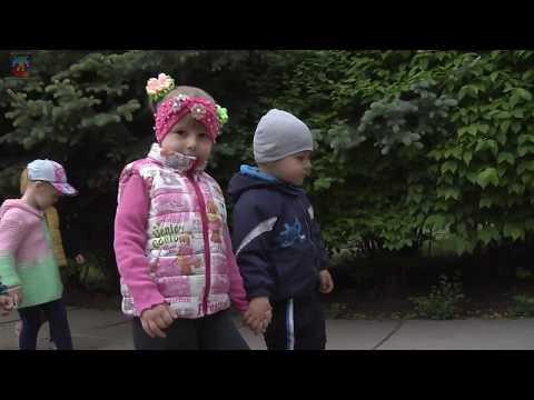 lgikvideo: детсады