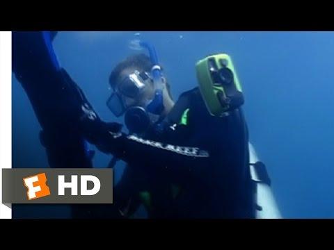 Open Water (7/11) Movie CLIP - Just a Little Cut (2003) HD