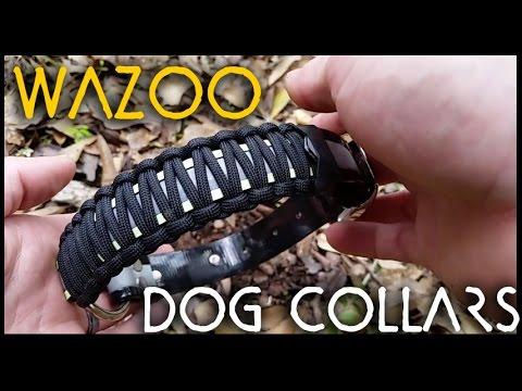 Paracord Dog Collar Kit