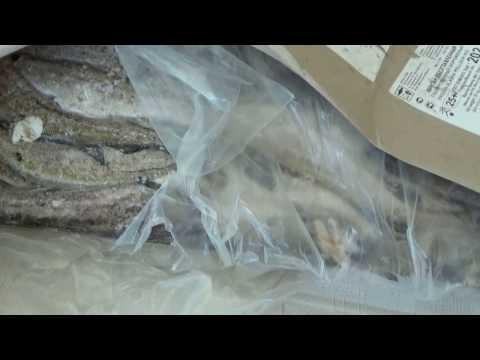 купить рыбу оптом в мурманске