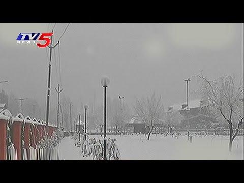 Heavy Snowfall In Jammu And Kashmir | Telugu News | TV5 News