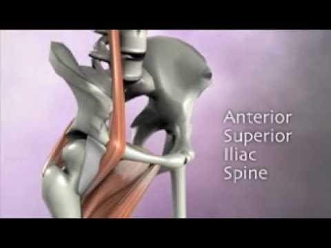 Muscle Energy Techniques Pelvis, Sacrum and Lumbar DVD by Real Bodywork