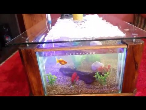 mesita con pecera : pecera mesa de centro egipcia FunnyDog.TV