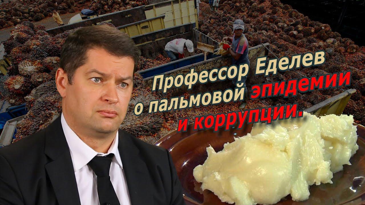 Профессор Еделев о пальмовой эпидемии и коррупции. @amamontov
