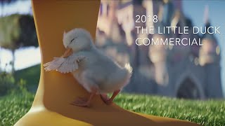 Cutest Cartoon Ducks