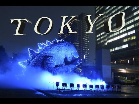 Tokyo: City Of Lights, Culture Shock For Westerns, Business Center And Touristic Places Of Tokyo