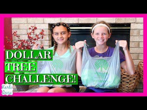 $10 DOLLAR TREE CHALLENGE
