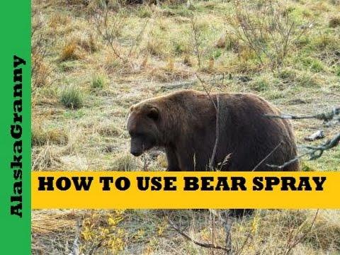 BYU study shows bear pepper spray a viable alternative to ...