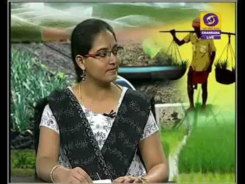 18/7/16. Water management in Kharif crops. Live phone-in