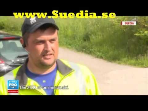 Viata vasluienilor care isi castiga existenta la taiat lemne in zonele izolate din Suedia