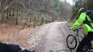Cu bicicleta Pietrele lui Solomon - Poiana Brasov pe Drumul Forestier