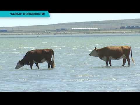 Озеро Чалкар на