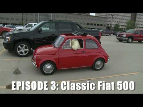 Giant Drives Classic Fiat 500 - CAR and DRIVER
