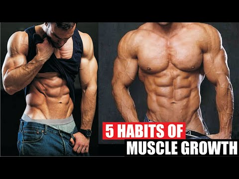 5-habits-of-muscle-growth