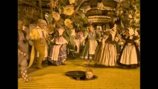 Wizard Of Oz - Reimagined