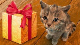 ПРИКЛЮЧЕНИЕ МАЛЕНЬКОГО КОТЕНКА мультик праздник симулятор кота для детей желейный медведь ПУРУМЧАТА