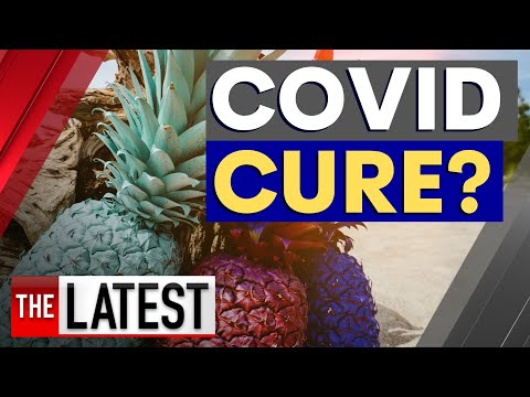 Breakthrough treatment: Could pineapples be the key to a COVID-19 cure?   7NEWS