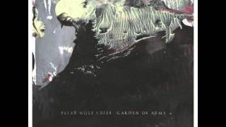 Peter Wolf Crier - Beach