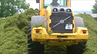 Volvo L70G pushing up silage