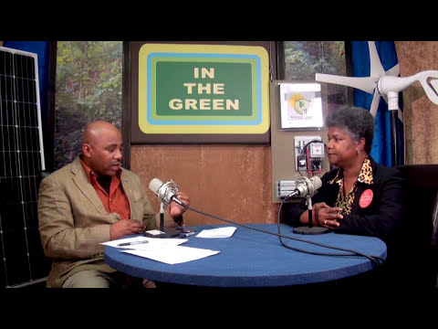 In The Green Beverly Kindle-Walker candidate Detroit City Council (Full Interview)
