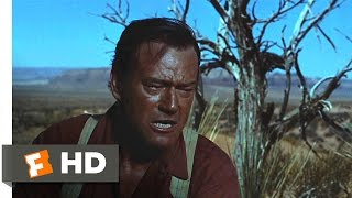 The Searchers (1956) - Don't Ever Ask Me More! Scene (5/10) | Movieclips