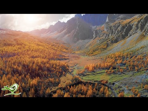 "Relaxing Piano Music: ""Calm Wind"" By Peder B. Helland (Official Video)"