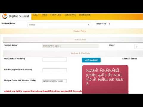 School Scholarship Online Process On Digital Gujarat  Scheme Data Entry  Video