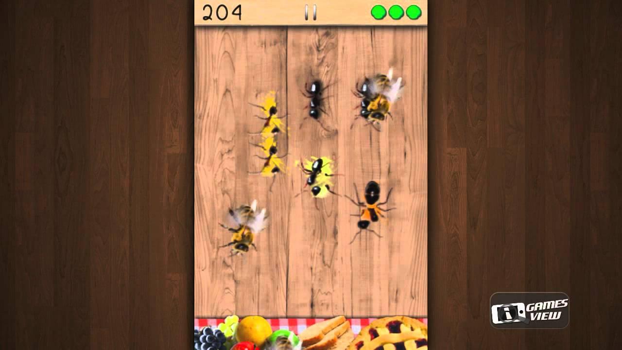 Smashing ants