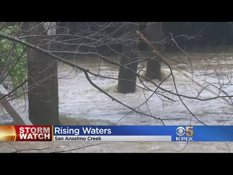 Atmospheric River Pushes San Anselmo Creek Level To Edge Of Flooding
