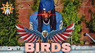 Chief Keef - BIRDS (Almighty So 2)[With Lyrics]