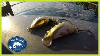 So fängt man Fische mit Kronkorken!