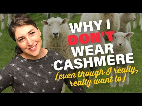 What Is A Lifestyle Vegan? || Mayim Bialik