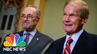 Chuck Schumer, Nelson Urge Donald Trump To 'Stop Bullying' Florida Election Officials | NBC News