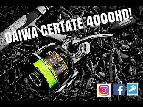 a2f5296a0b0 DAIWA CERTATE 4000HD UNBOXING AND FIRST IMPRESSIONS! - YouTube