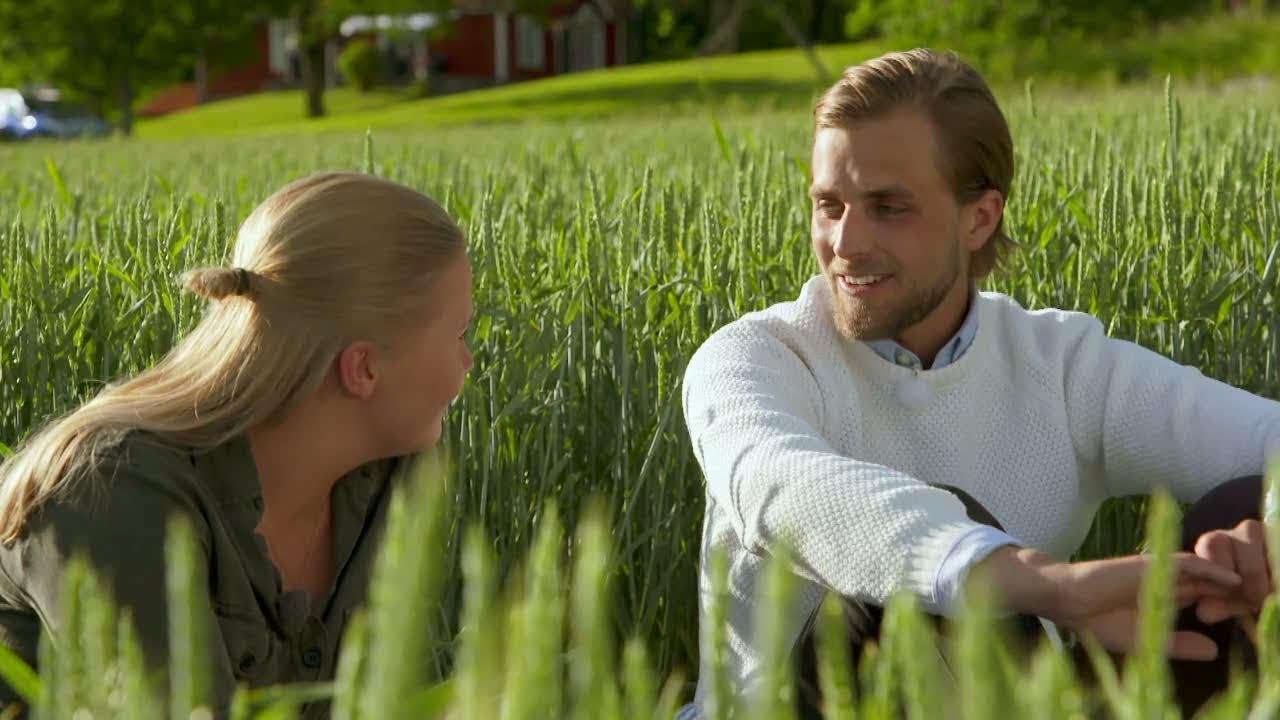 Svenljungabygden dejt aktiviteter - Agriturismo Pingitore