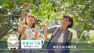 青春好7淘 台南鄉村正好玩 內行人行程大公開