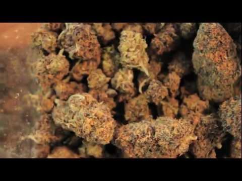 Myster DL - Marijuana (Official Video)