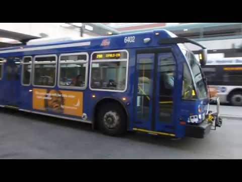 RTA Pace Bus: 2014 ElDorado National Axess Route 290 Bus