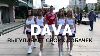 DAVA.M | ВЫГУЛИВАЕТ ИНОГДА СВОИХ СОБАЧЕК