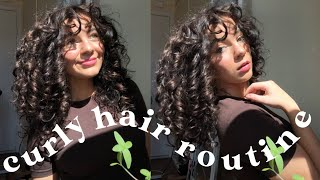 CURLY HAIR ROUTINE! my updated 3a curly hair routine :)
