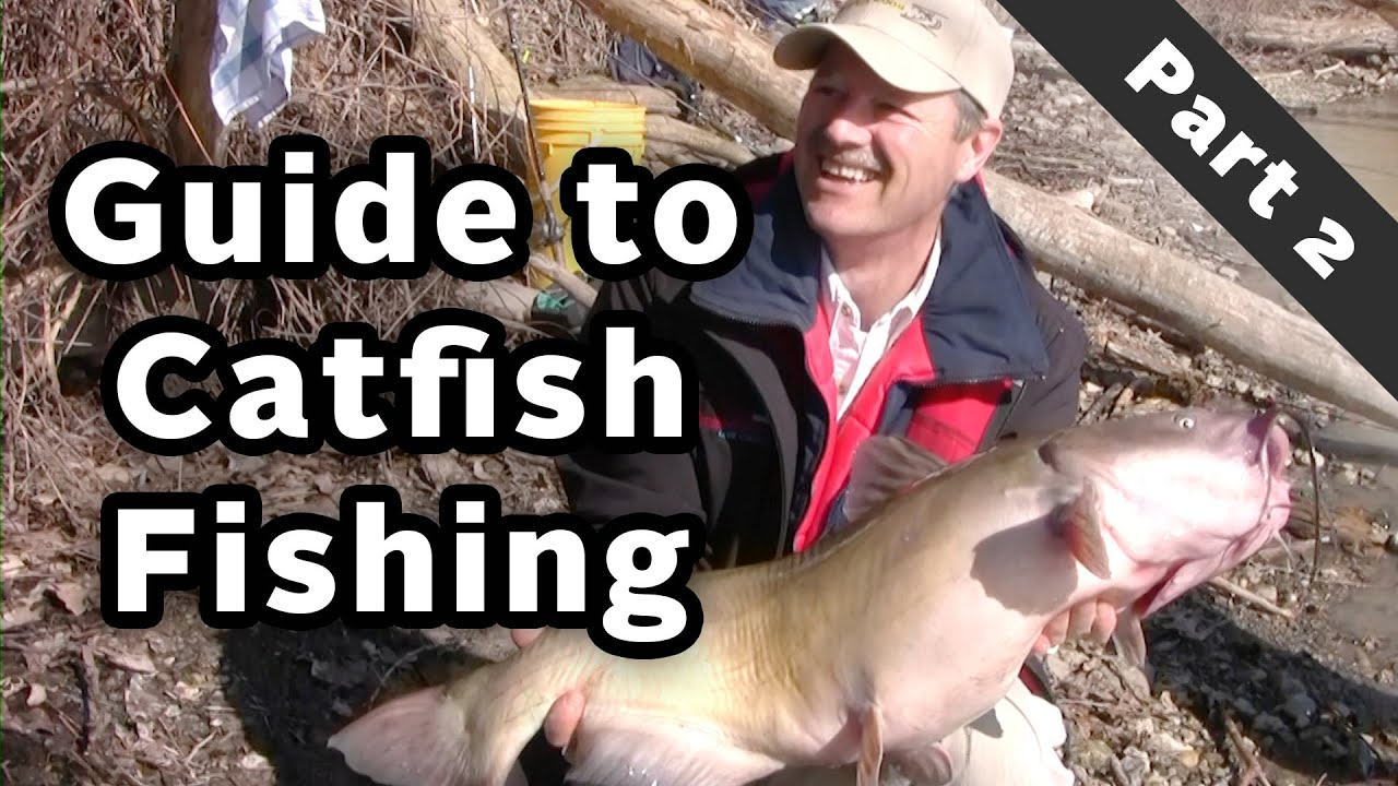 How To Eat Fried Worms By Thomas Rockwell Amazoncom Catching Catfish  Special Series Guide To Catching Catfish The Right Gear Part 2 Of 3 Youtube