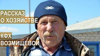 КФХ Возмищевой В.И. Основное направление - мясное коневодство. Рассказ о хозяйстве