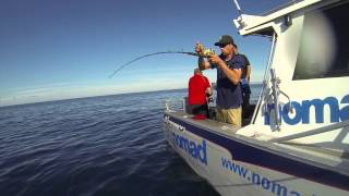Nomad Sportfishing, Bent rods, Big fish, big smiles