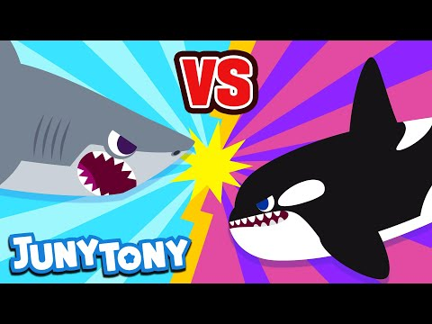 Great White Shark Vs. Killer Whale | JunyTony Versus Series Ep. 1 | Sea Animal Song | JunyTony