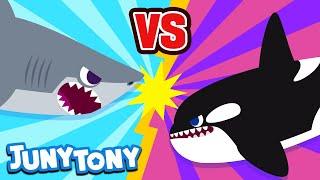 Great White Shark vs. Orca | Animal Songs for Kids | Sea Animals | Versus Song | JunyTony