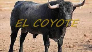 SONES CON BANDA-SONES MIX CON BANDA LA COSTENA