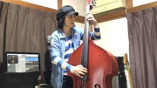 ROCK THIS TOWN / STRAY CATS (LEE ROCKER) 【DOUBLEBASS COVER】