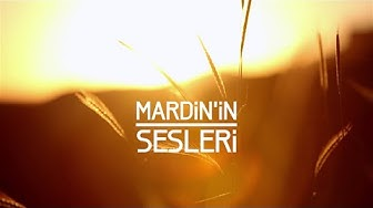 MARDİN'İN SESLERİ / SOUNDS OF MARDIN 马尔丁声音