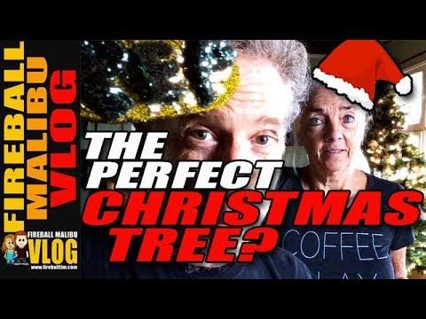 BEST CHRISTMAS TREE EVER! - FIREBALL MALIBU VLOG 720