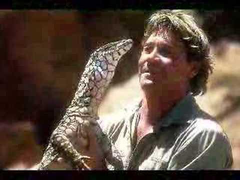 """In Gedenken an """"Steve Irwin"""""""